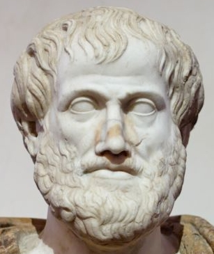 Fichier:Détail d'un buste d'Aristote.jpg