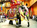 Decorated Indian elephant.jpg