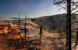 Crepuscular rays and Dead trees at Mammoth Hot Springs.jpg