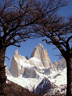 Fitz Roy framed trees (colour balans).jpg