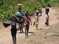 200px-Corv%C3%A9e_d%27eau_au_Malawi
