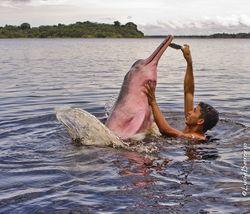 Une personne joue avec un boto, au Brésil